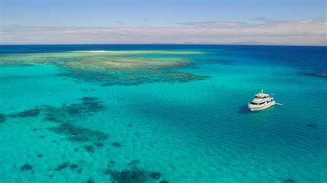 Great Barrier Reef Day Trip With Mission Beach Dive