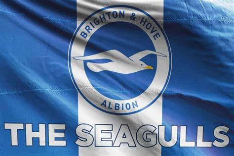 The Seagulls: Brighton & Hove Albion FC Flag | Unofficial