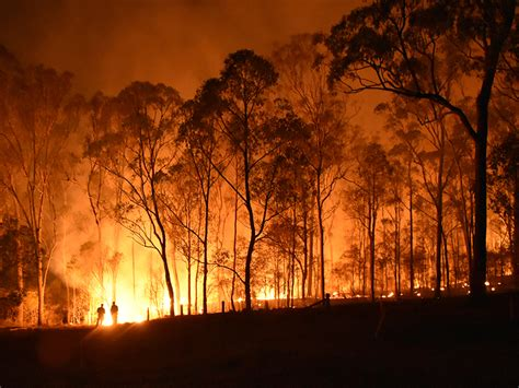 Australia, Your Country Is Burning—Dangerous Climate
