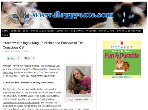 Conscious Cat interview with Floppycats