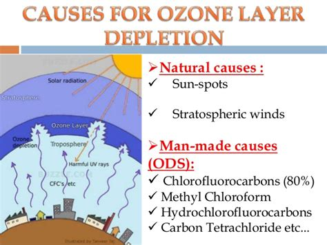 Ozone depletion and its effects mam 2014-02