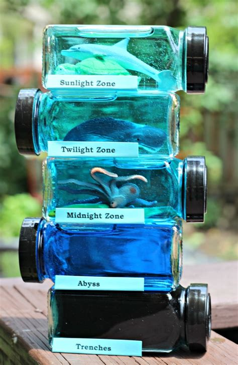 20 DIY Science Experiments for Kids   Backyard Science