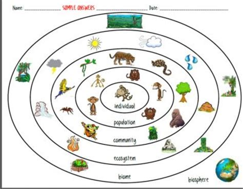 1000+ images about Ecology middle school on Pinterest