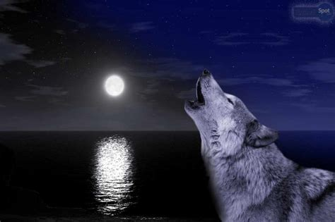 The First Full Wolf Moon 2020 - Why is it called the Wolf