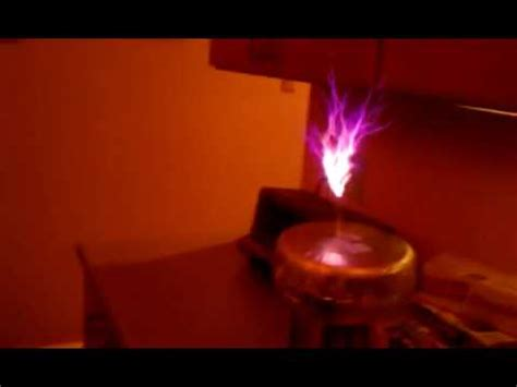 Pizza Cat Reats to Tesla Coil - YouTube